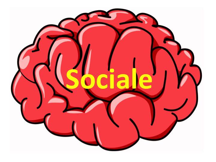 Sociale – Trivsel og Bevægelse i Skolen