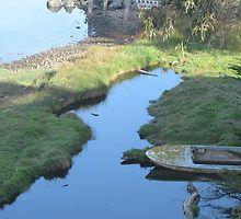 Bodega Bay Boat by jdbussone