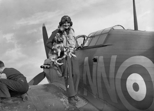 Sergeant B Furst of No 310 (Czechoslovak) Squadron RAF is greeted by the squadron mascot - World War 2