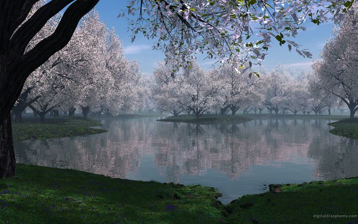 beautiful river pictures - - Yahoo Image Search Results