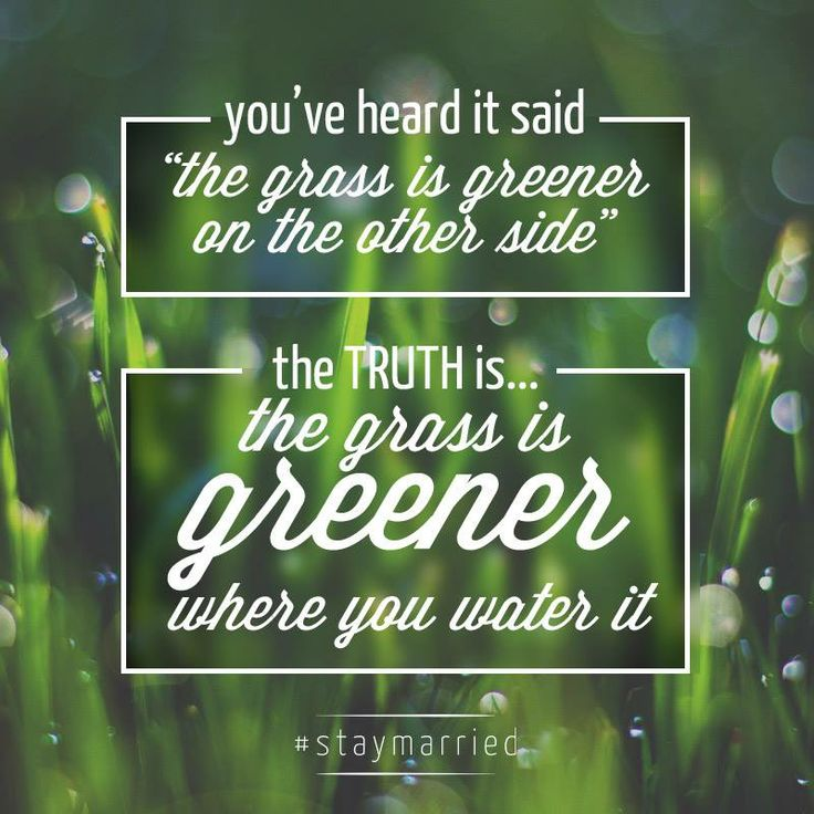 """An excellent reminder for all relationships. """"The grass is greener where you water it!"""" (http://staymarriedblog.com/an-open-letter-to-the-cheater-and-his-wife/)"""