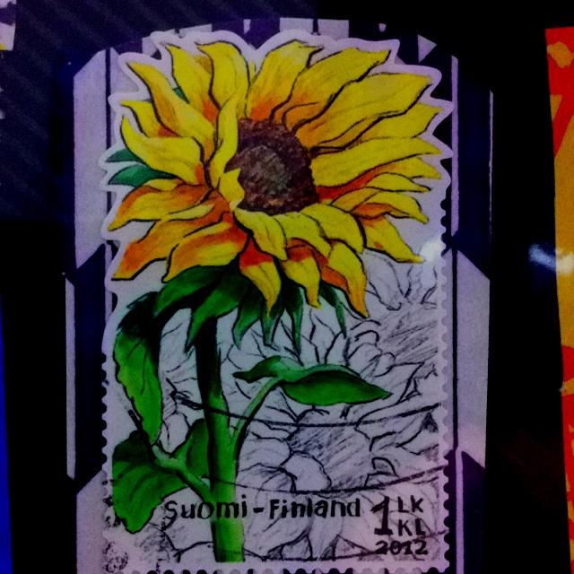 Sun flower, Finland