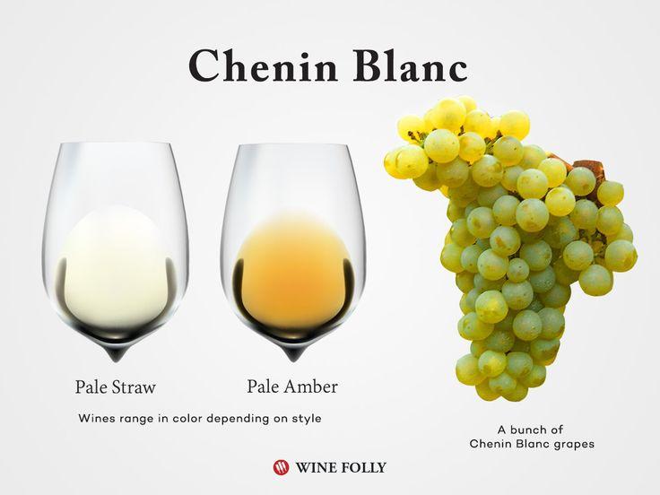 http://winefolly.com/review/chenin-blanc-wine-guide/?utm_content=buffer5b1a1&utm_medium=social&utm_source=pinterest.com&utm_campaign=buffer  A guide to Chenin Blanc wine. #wine101 #winefolly