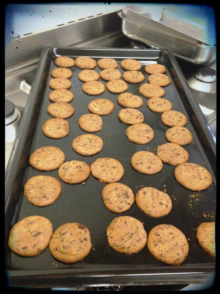 Ditzy - Milo Cookies