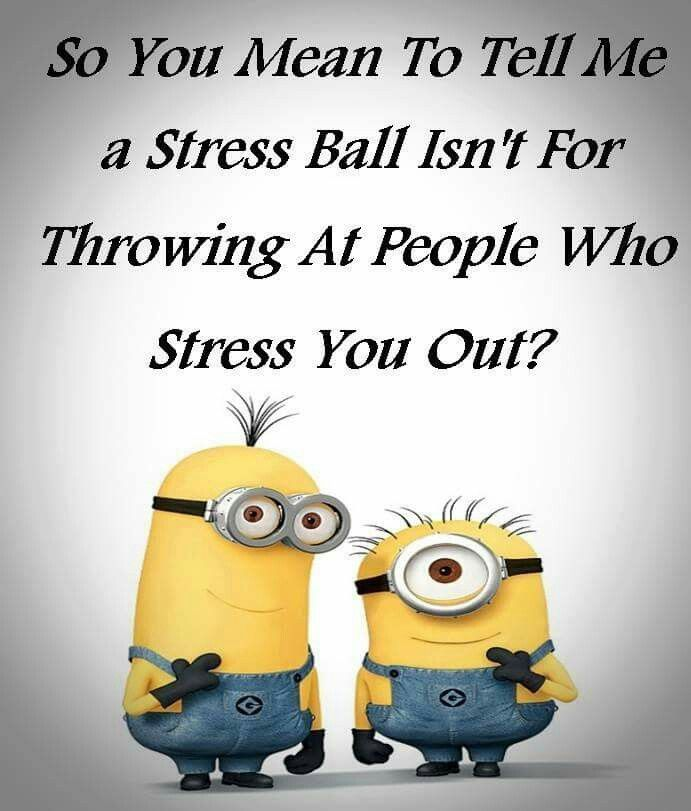So You Mean To Tell Me A Stress Ball Isnt For Throwing At People Who Stress You Out Funnies Funny Funny Quotes Minions Quotes