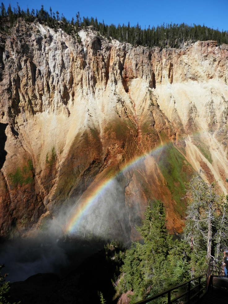 Rainbow formed in the spray of Lower Falls, Grand Canyon of the Yellowstone