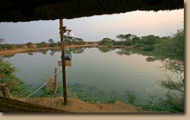 Pete's Pond, Botswana
