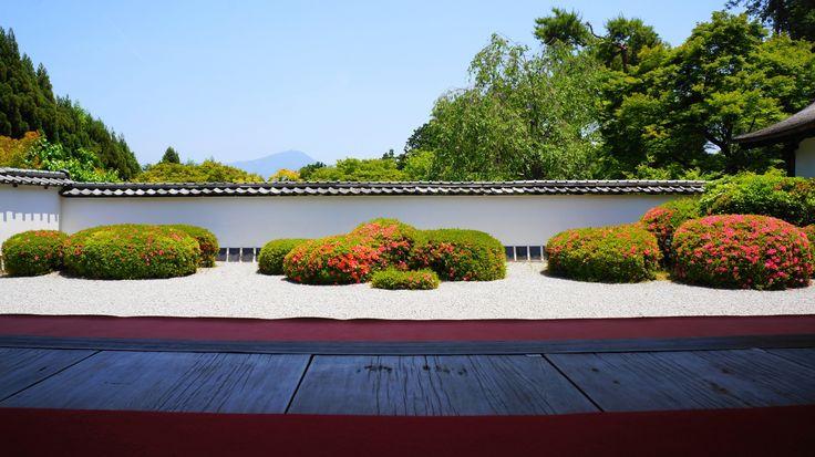 京都 正伝寺 獅子の児渡し庭園 さつき Japan,Kyoto,Shoden-ji temple,azalea,satsuki