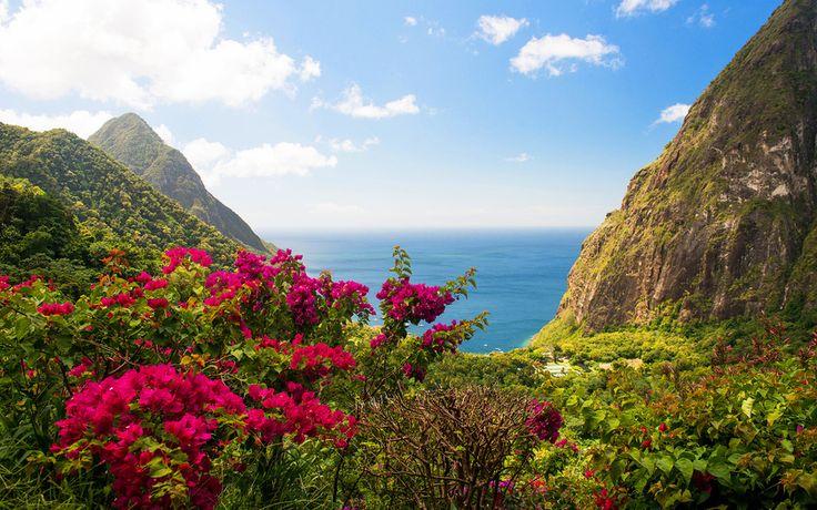 остров, скалы, море, вест индия, цветы