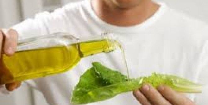 effcacy and benefits of olive oil for healt
