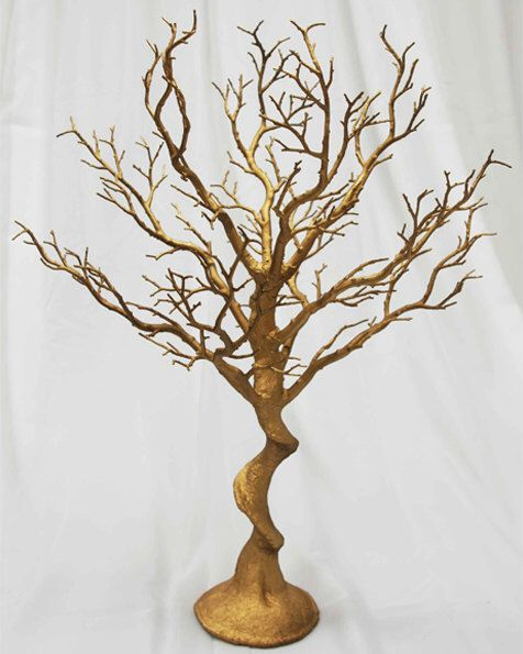 Best 20 manzanita tree ideas on pinterest manzanita for Tree twigs decoration