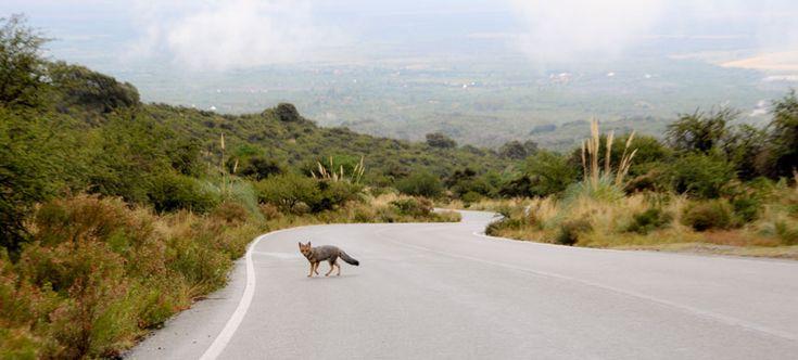 Fotos de Villa de Merlo, Galería 2 - Paisajes y Fotografías de las Sierras