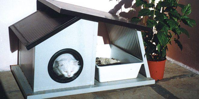 Cuccia per gatti da esterno fai da te   Come costruirla con materiale di recupero