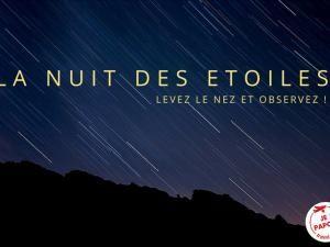 La nuit des étoiles & les étoiles filantes • Hellocoton.fr