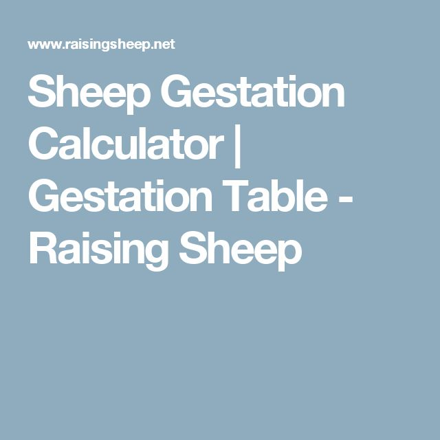 Sheep Gestation Calculator | Gestation Table - Raising Sheep