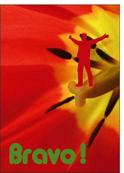 Carte Bravo rouge pour envoyer par La Poste, sur Merci-Facteur !