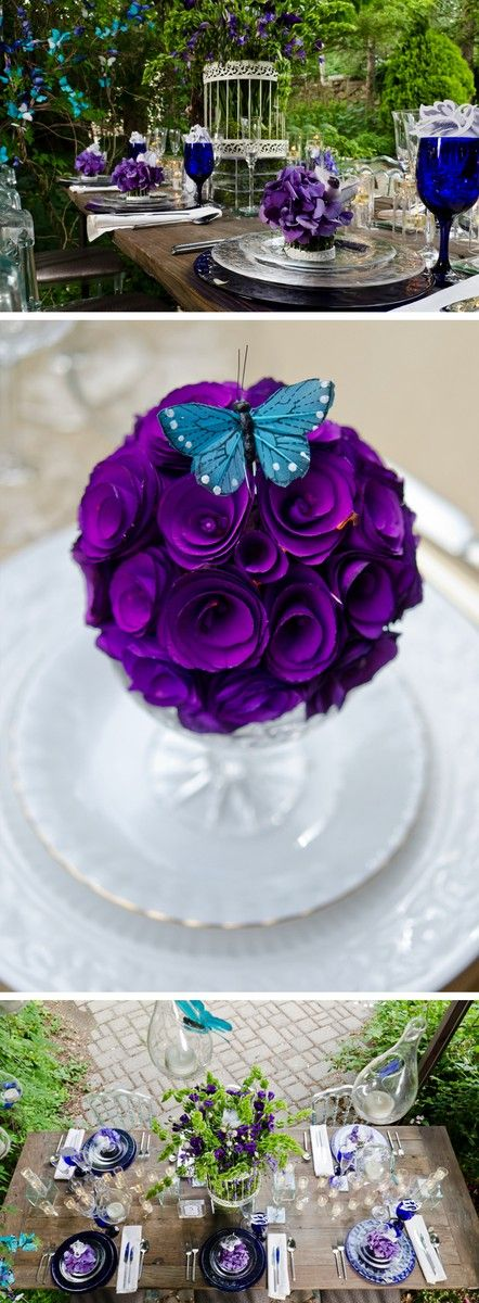 Beautiful purple curled flowers and blue butterfly