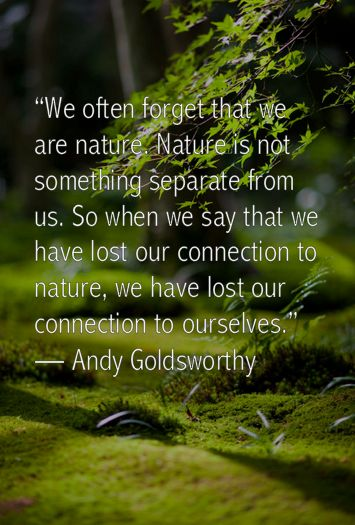 We often forget that we are nature. Nature is not something separate from us. So when we say that we have lost our connection to nature, we have lost our connection to ourselves. -Andy Goldsworthy
