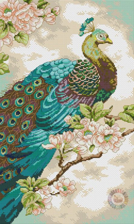 Cross-stitch Beautiful Peacock... link for all the pattern charts & color charts: http://kento.gallery.ru/watch?ph=bEeB-fUREy#feature=topscroll ... Gallery.ru / Фото #1 - 74 - kento