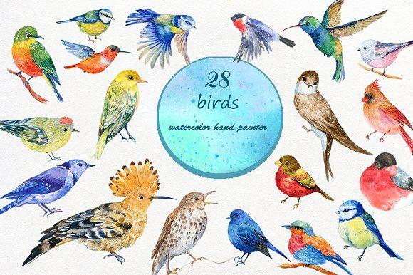 set of watercolor birds by MitrushovaArt on @creativemarket