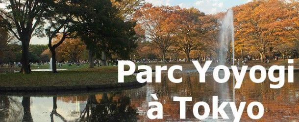 Yoyogi Park à Tokyo : le lieu où sortir dans la capitale