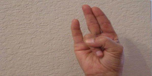 В мире, полном стрессов, йога для рук может значительно улучшить Ваше настроение и нервное состояние. Сурья Мудра Это поза для потери веса. Она может серьезно улучшить состояние пищеварительной системы и […]
