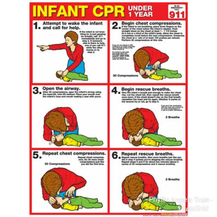 NEED CPR TRAINING FIRST TIME OR RENEWAL?  CPR BLS or First Aid . There is no minimum number of students needed to set up class with me. THIS SATURDAY MARCH 10TH @ 10AM  Instructor is an BLS/ HEARTSAVER AHA Certified Adult CPR/ AED Child CPR/AED Infant CPR/AED Adult Child Infant Choking Basic Life Support  CPR CARD ISSUED SAME DAY #cpr #heartsaver #bls #moblietraining #cprinstructor #cprtraining#firstaid #savealife #baltimore #dmvcpr Call Text or Email for services.  443-985-1541…
