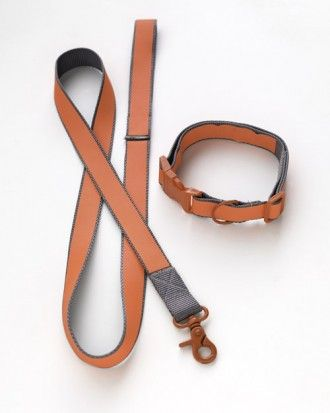 """See the """"Reflective Dog Leash"""" in our Dog Crafts gallery"""