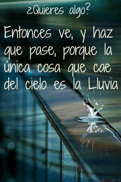 Lucha por tus sueños! !!!!