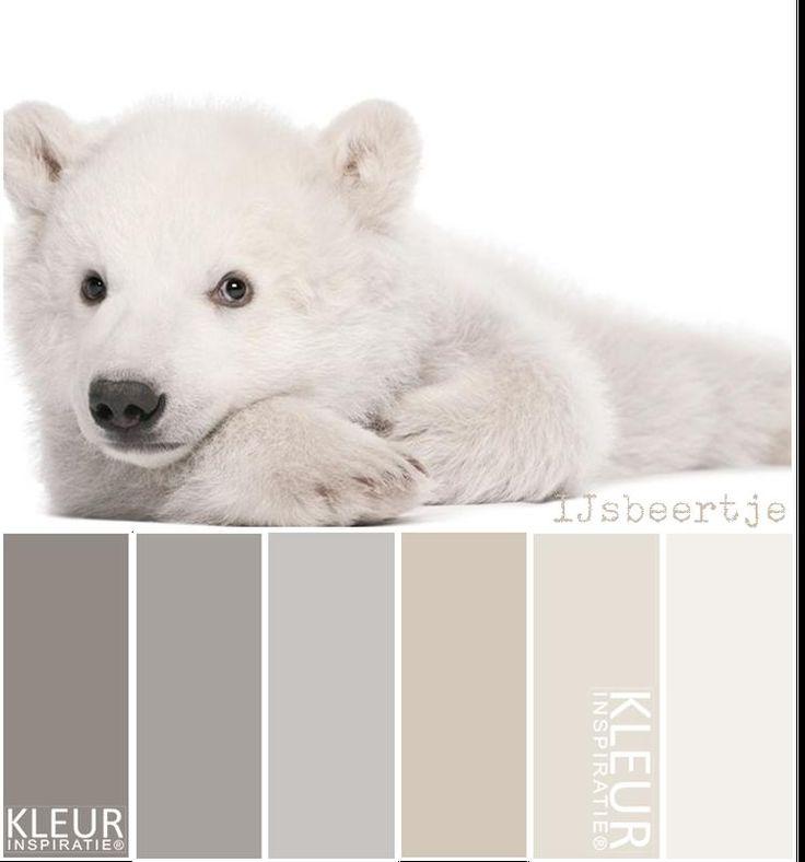 Bekijk de foto van MrsHooked - Kleurinspiratie met als titel IJSBEERTJE - Kleurenpalet: zachte natuurlijke tinten gebroken wit beige en grijs en andere inspirerende plaatjes op Welke.nl.