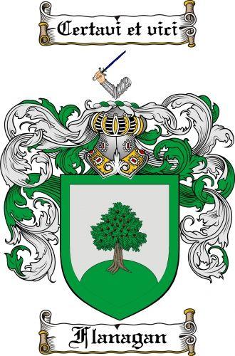 7 best gallagher coat of arms gallagher family crest images on 799 flanagan coat of arms flanagan family crest instant download altavistaventures Gallery