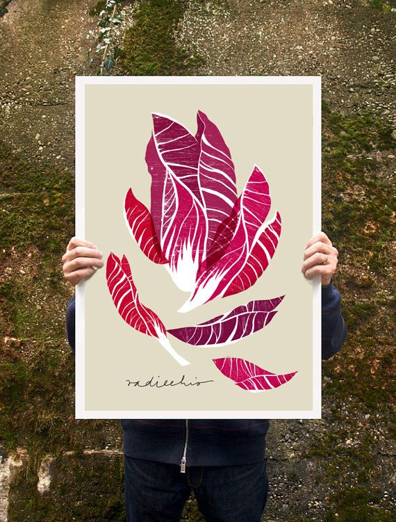 Radicchio Vegetable Poster print  20x27  archival fine art by anek, $85.00  Need this for my future kitchen!!!