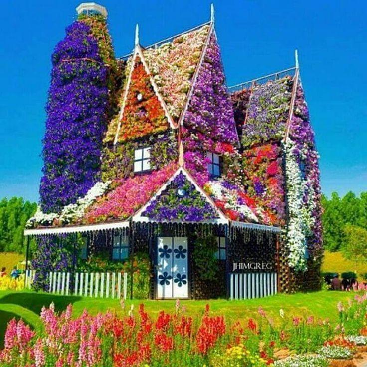 Flower house in Dubai... En wij waren al blij met onze wilde wingerd tegen het tuinmuurtje.......