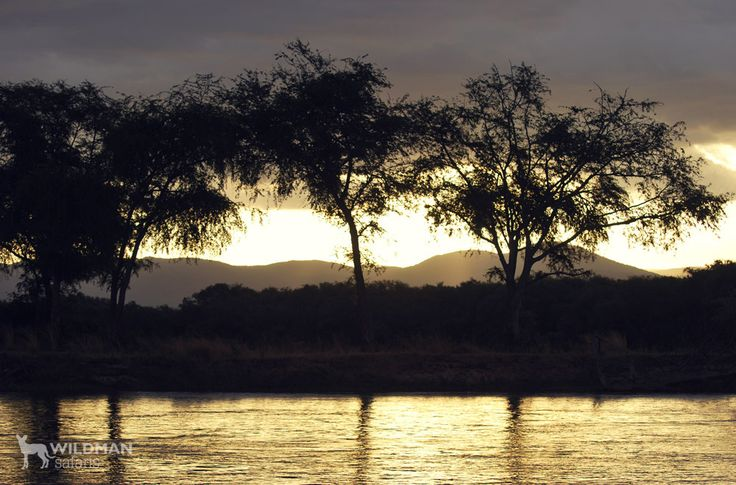 Nothing like an African sunset! Especially when it's viewed from a boat with a gin and tonic in hand :) #africa #sunset #zambezi