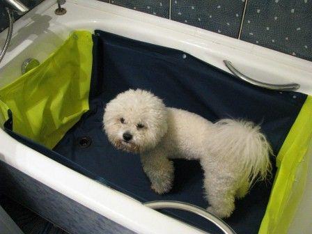 """Вкладыш для ванной """"Мойджек"""" #вкладыш_для_ванной #мойджек #мытье_собаки"""