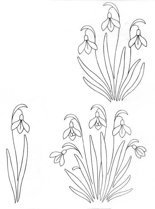 Embroidery Pattern .jpg Image Only. Beautiful Snowdrops. jwt