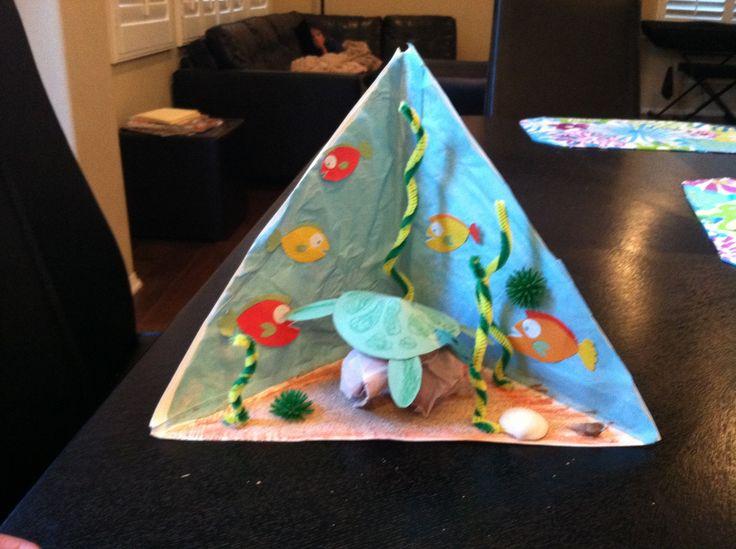 Sea turtle triorama | School stuff | Pinterest | Turtles ...