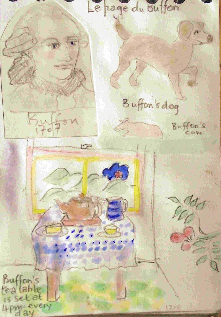 the page of Buffon [Philip Weaver's sketch book]