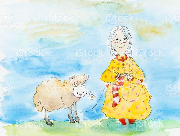 Vecchia donna maglieria un calzino, pecore. illustrazione royalty-free