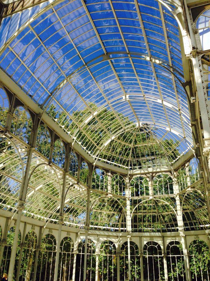 Real Jardín Botánico de Madrid. Invernadero.