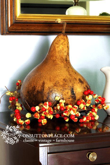 How to Stain a Gourd | DIY step by step directions to preserve a real gourd | On Sutton Place