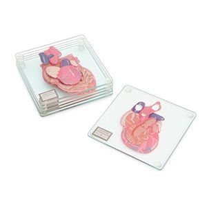 Each set of Anatomic Heart Specimen Coasters comes with six glass coasters. If you stack your Anatomic Heart Specimen Coasters in the proper order and look from the proper angle, you'll see a full heart.