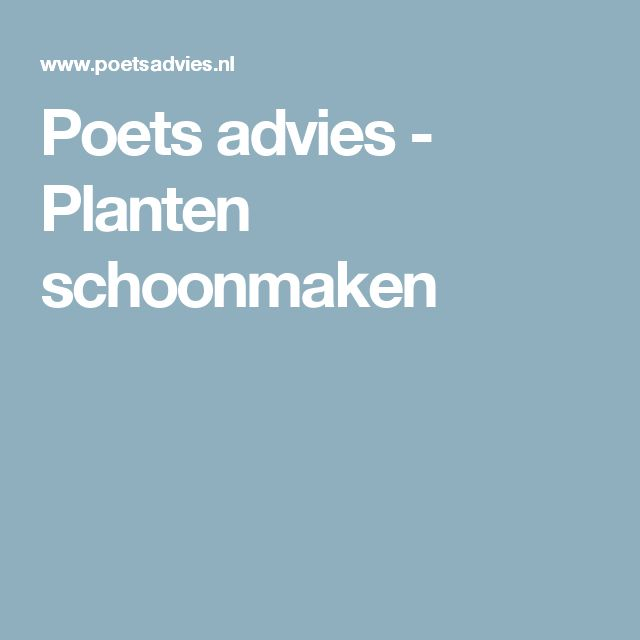 Poets advies - Planten schoonmaken