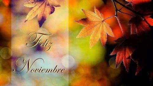 Feliz Noviembre Confesiones y Realidades