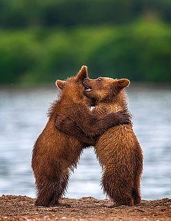 Hugs ..