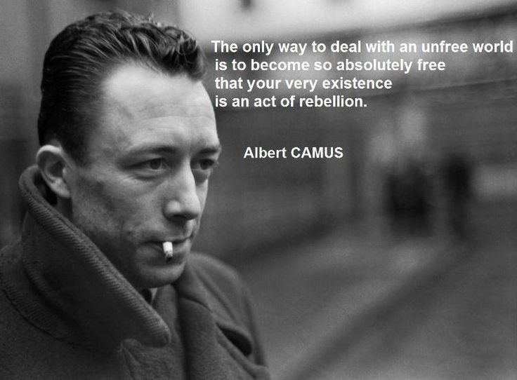 Albet Camus, from Dr. Shoes' House of Trolls  https://www.facebook.com/houseoftrolls: Gr8 Quotations, Absolutely Free, Gnar Stuff, Entirely Inspirational, Hot Damn, Yep Quotes, Albet Camus, Albert Camus, Inspiration Quotes