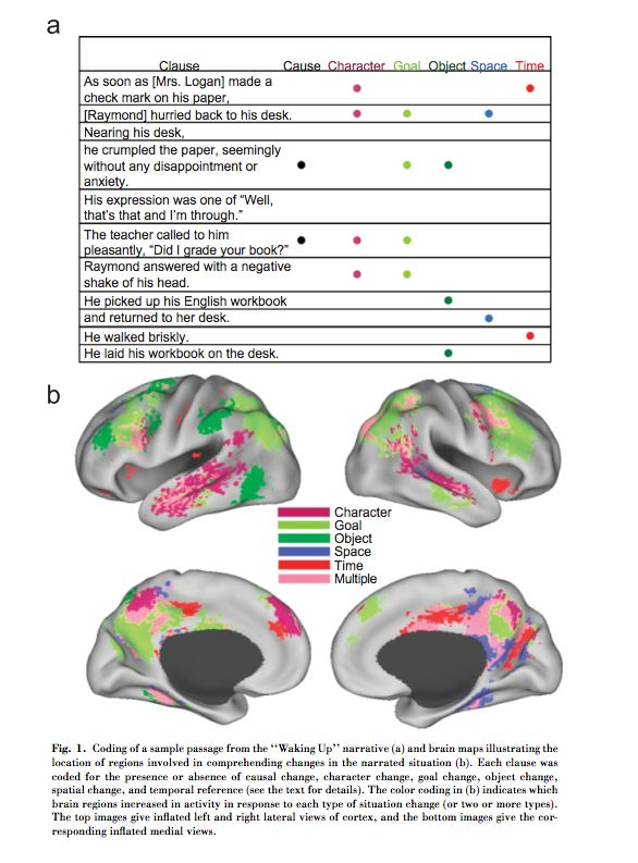 stories and the brain study