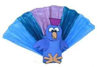 TP turkey 1