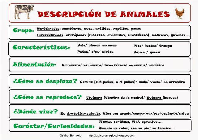 LAPICERO MÁGICO: Descripción de animales