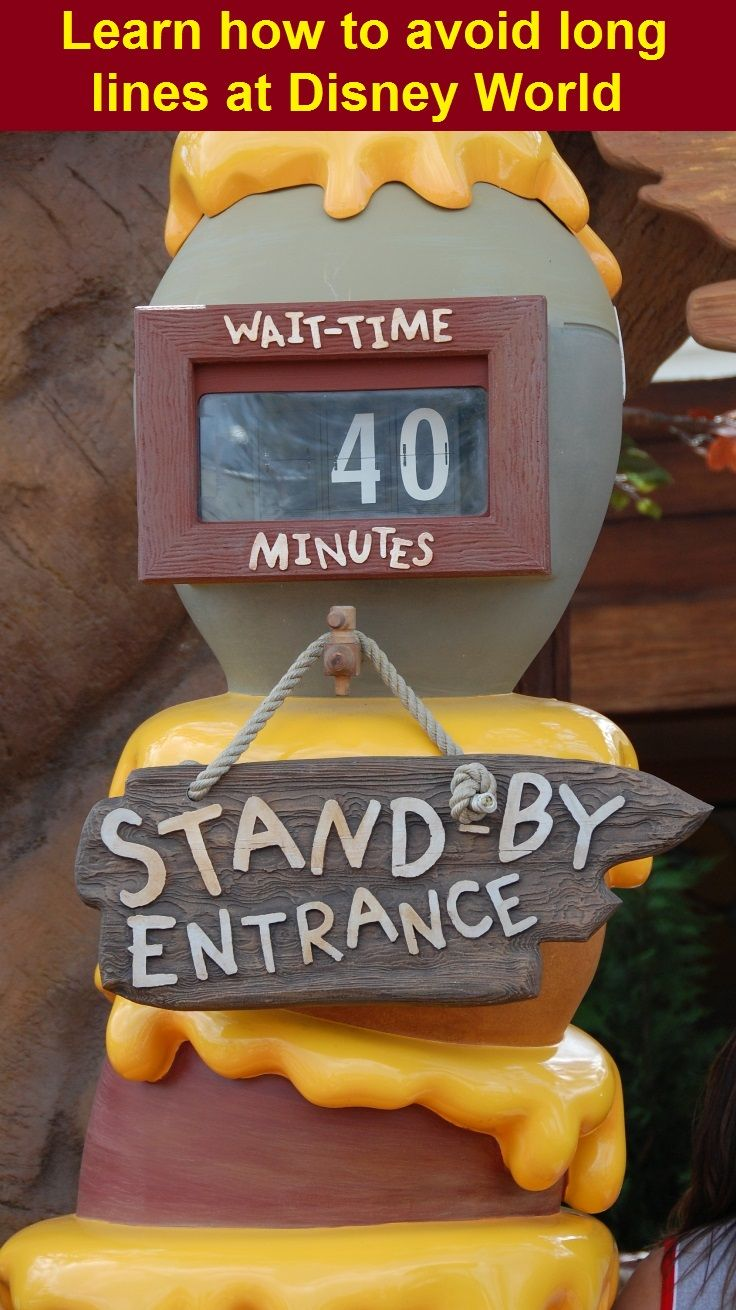 Disney World Tips & Tricks - Why spend your vacation waiting in lines? Learn how you can minimize lines even during the busiest seasons at Disney World by clicking on this pin or going to http://www.buildabettermousetrip.com/free-touring-plans